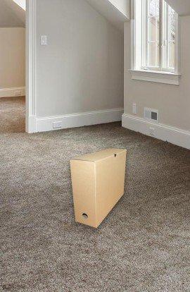 Carton Boite Archives - Carton de déménagement chez Top Carton