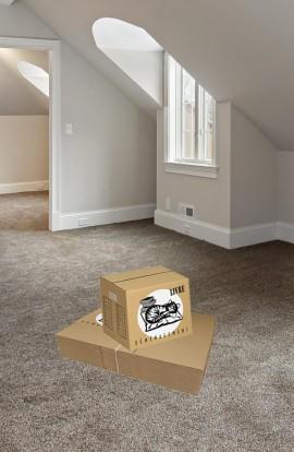 Pack de 20 Cartons à Livres - Carton de déménagement chez Top Carton