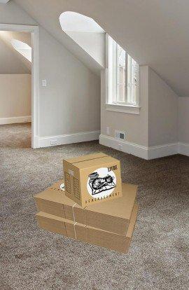 Pack de 40 Cartons à Livres - Carton de déménagement chez Top Carton